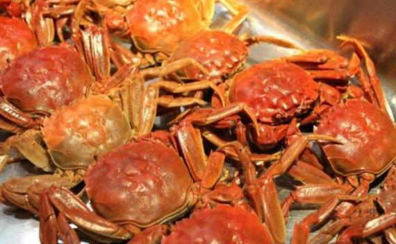 螃蟹要如何挑选|告诉你4个小方法